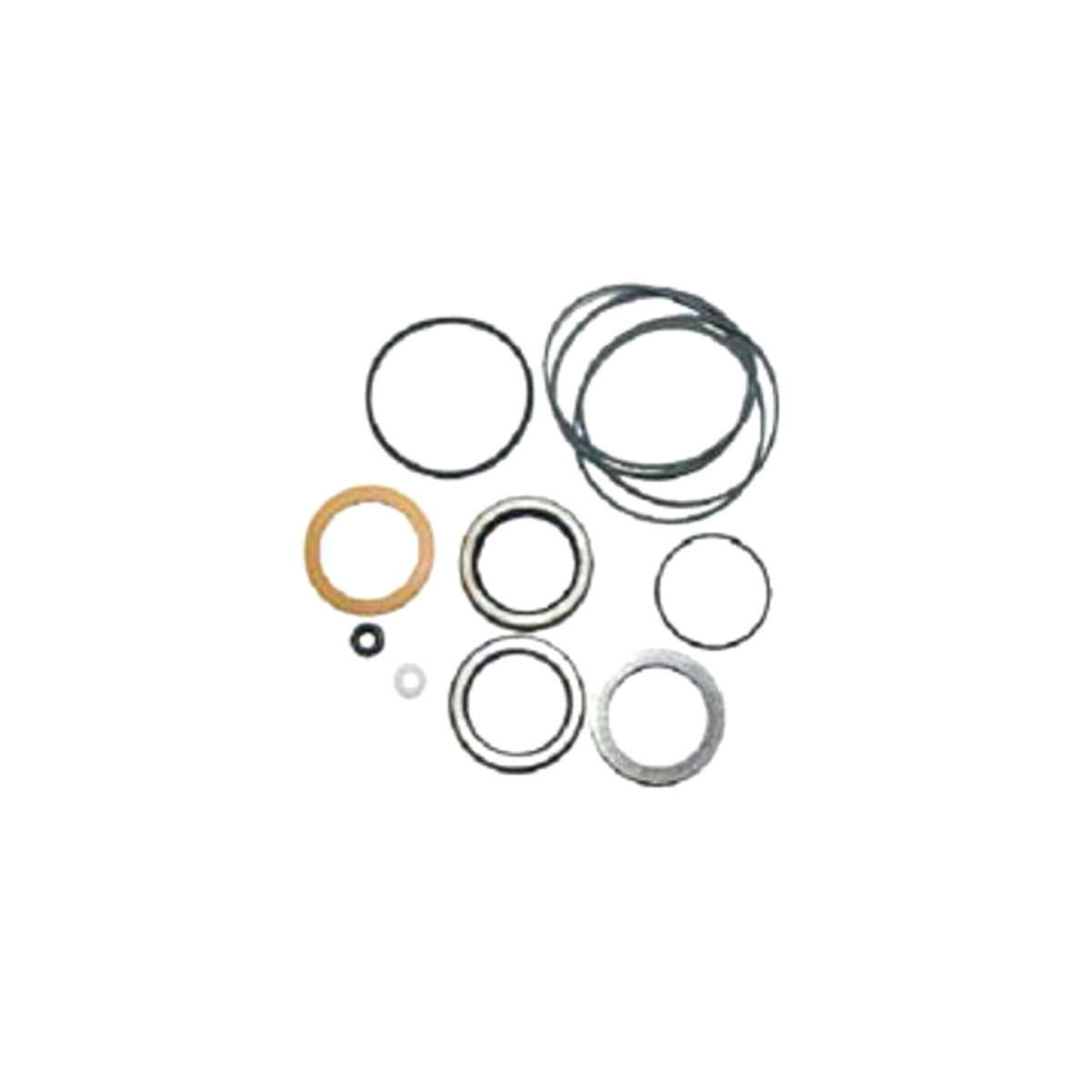 901023 Dixie Chopper Seal Kit Wht Pump