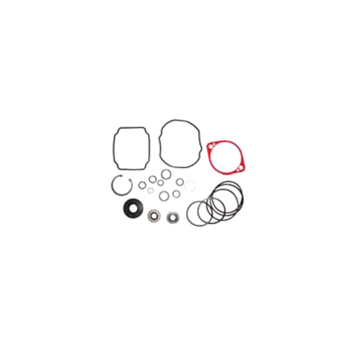 901166 Dixie Chopper Seal Kit 10A Pump Hydro-Gear