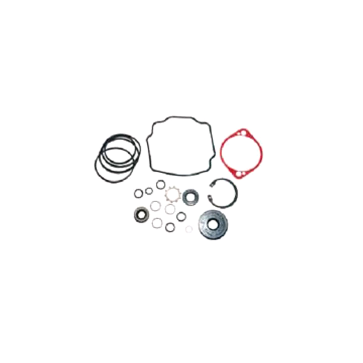 901171 Dixie Chopper Seal Kit 16A Pump Hydro-Gear