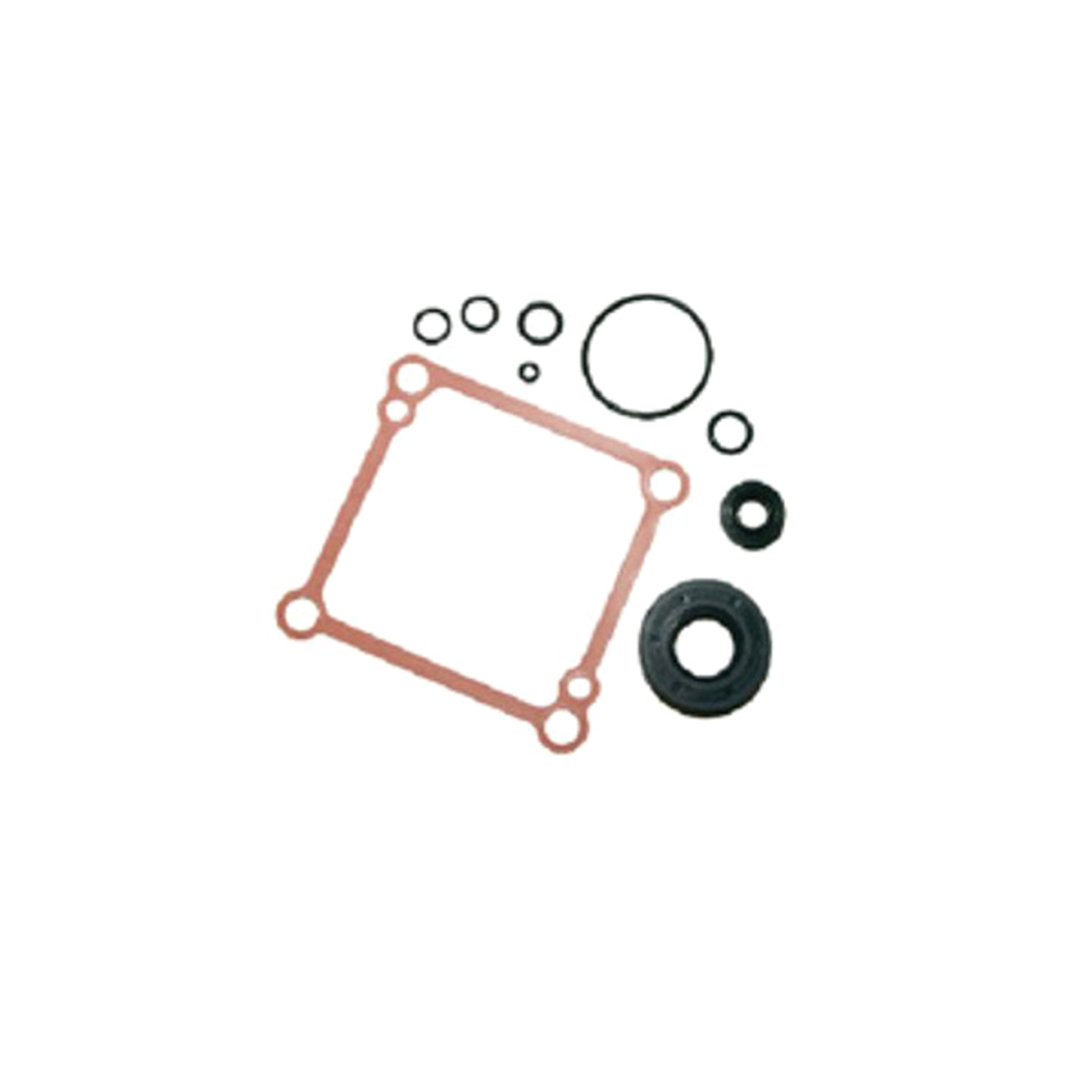 901745 Dixie Chopper Seal Kit Wht Pump